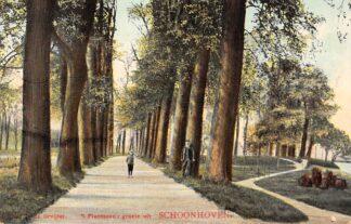 Ansichtkaart Schoonhoven Groeten uit Schoonhoven 't Plantsoen De Gruijter 1908 HC3
