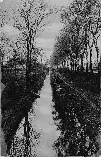 Ansichtkaart Terborg Landweg met boerderij 1906 HC1061