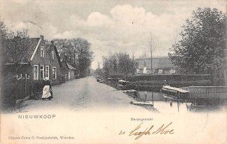 Ansichtkaart Nieuwkoop Dorpsgezicht begin 1900 HC1170