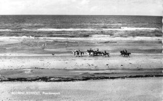 Ansichtkaart Noordwijkerhout Paardensport Strand Ruiters te paard 1961 HC1217