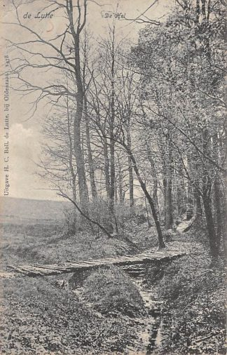 Ansichtkaart De Lutte bij Oldenzaal De Hel 1908 HC1243