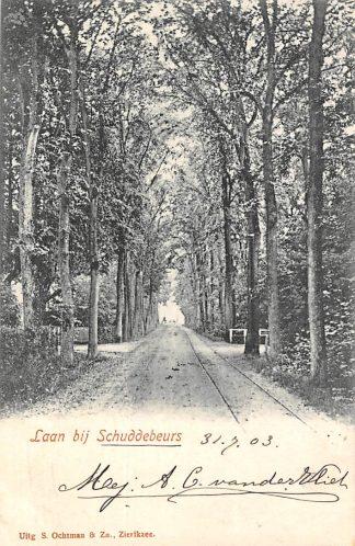 Ansichtkaart Laan bij Schuddebeurs Zierikzee Tram spoor 1903 HC134