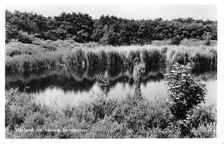 Ansichtkaart Vlieland De nieuwe Eendenkooi 1957 HC1369