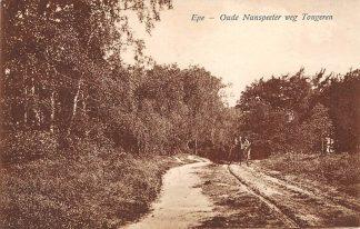 Ansichtkaart Epe 1925 Oude Nunspeeter weg Tongeren HC1467
