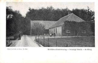 Ansichtkaart De Steeg Boschwachterswoning Onzalige Bosch HC1521