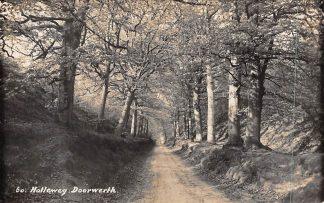 Ansichtkaart Doorwerth Newo fotokaart 60. Holleweg 1936 HC354