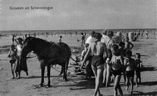 Ansichtkaart Scheveningen Groeten uit  Strand Paard en wagen en badgasten HC379