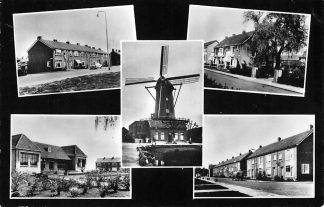 Ansichtkaart Bodegraven Vijfluik met molen 1965 HC410