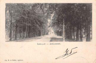 Ansichtkaart Apeldoorn Loolaan 1900 HC483