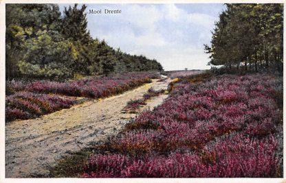 Ansichtkaart Drenthe Stempel Beilen jaren 30 HC510