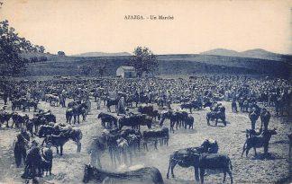 Ansichtkaart Alger Algerije Azazga Un Marche Markt Afrika Africa Wereld HC551