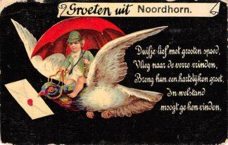Ansichtkaart Noordhorn Groeten uit Noordhorn 1910 HC624