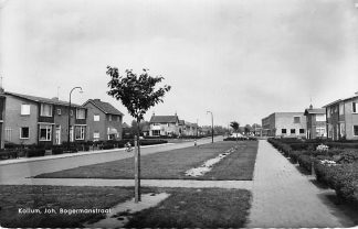 Ansichtkaart Kollum Joh. Bogermanstraat 1962 HC644