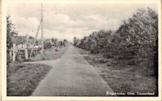 Ansichtkaart Ruighuizen Balk Gaasterland HC773