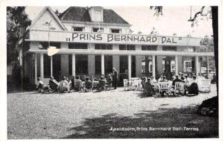 Ansichtkaart Apeldoorn Prins Bernhard Dal Terras 1961 HC889
