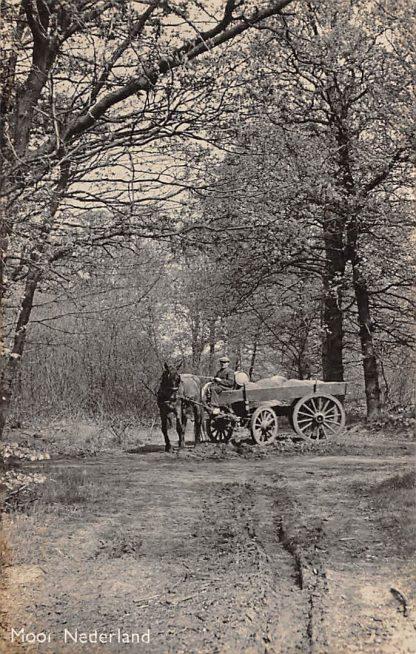 Ansichtkaart Onbekend 'Mooi Nederland' Boer met paard en wagen 1940 HC1544