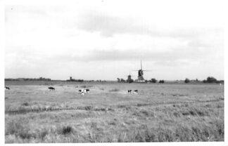 Ansichtkaart Streefkerk Agfa fotokaart 3 molens HC1636