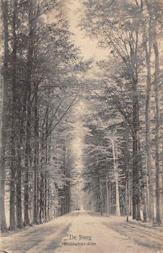 Ansichtkaart De Steeg Middachter-Allee 1920 HC1708