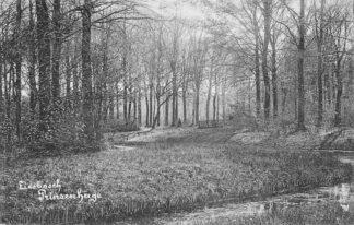 Ansichtkaart Princenhage Breda Liesbosch 1907 HC1716