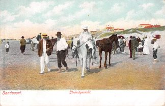 Ansichtkaart Zandvoort Strandgezicht Paard HC1810