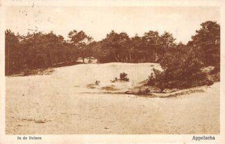 Ansichtkaart Appelscha 1928 In de duinen Reclame Cafe Duinen Zathe HC1887