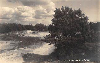 Ansichtkaart Appelscha Fotokaart Duinen HC1892