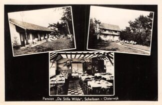 Ansichtkaart Oisterwijk 1954 Pension De Stille Wilde Scheibaan HC2027