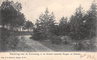 Ansichtkaart Bergen (NH) 1906 Wandeling naar de Duivelsweg in de Duinen tusschen Bergen en Schoorl HC2106