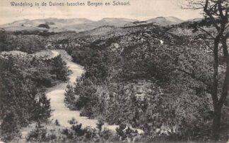 Ansichtkaart Bergen (NH) 1915 Wandeling in de Duinen tussen Bergen en Schoorl HC2107