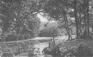 Ansichtkaart Bergen (NH) 1927 De Hofvijver met visser HC2108