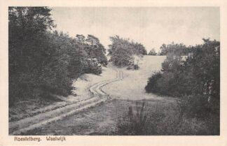 Ansichtkaart Waalwijk Roestelberg HC2128