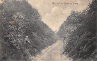 Ansichtkaart De Steeg 1917 Weg naar de Kaap HC2143