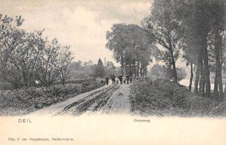 Ansichtkaart Deil Geldermalsen Dorpsweg HC2155