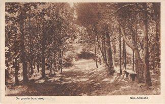 Ansichtkaart Ameland Nes 1934 De Groote Boschweg HC2161