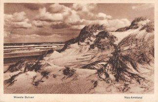 Ansichtkaart Ameland Nes 1935 Woeste Duinen HC2162