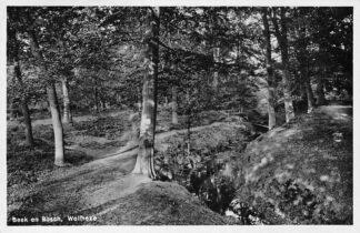 Ansichtkaart Wolfheze 1936 Beek en Bosch HC2182