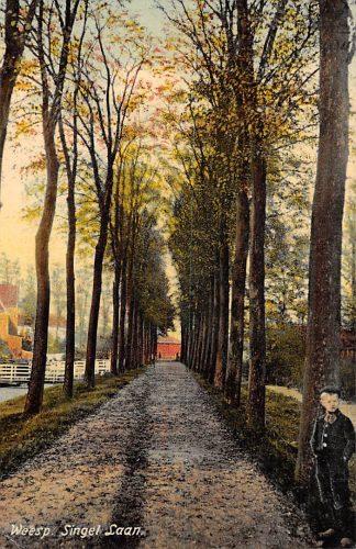 Ansichtkaart Weesp Singel Laan 1910 HC2279