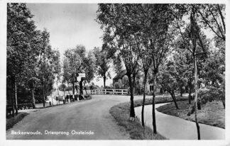 Ansichtkaart Berkenwoude Driesprong Oosteinde HC2340