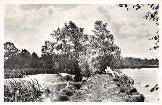 Ansichtkaart Leersum Leersumse Plassen 1960 HC2458