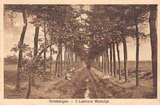 Ansichtkaart Driebergen 't Lekkere Watertje 1933 HC2502