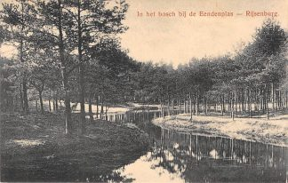 Ansichtkaart Driebergen In het bosch bij de Eendenplas Rijsenburg HC2503