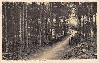 Ansichtkaart Nunspeet - Vierhouten Eibertjespad 1928 HC2547