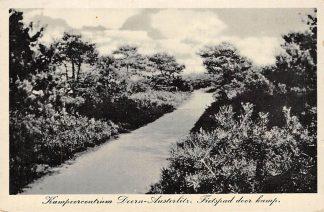 Ansichtkaart Doorn - Austerlitz Kampeercentrum Fietspad door kamp Camping HC2623