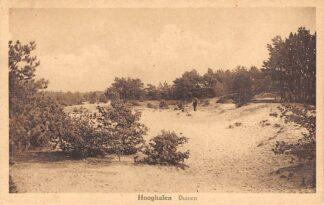 Ansichtkaart Hooghalen Duinen 1931 HC2833
