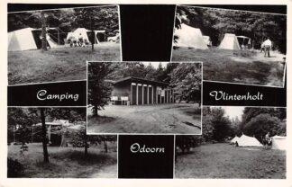 Ansichtkaart Odoorn Camping Vlintenholt HC2839