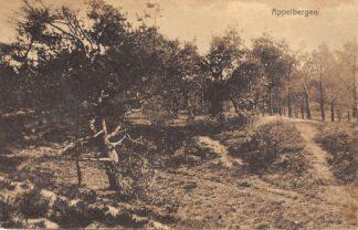 Ansichtkaart Haren Appelbergen 1918 HC3043