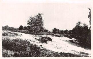 Ansichtkaart Waalwijk Heidegezicht HC3153