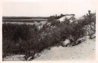 Ansichtkaart Waalwijk Roestelberg 1946 HC3154