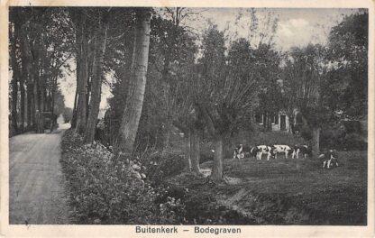 Ansichtkaart Bodegraven Buitenkerk Boerderij met koeien en paard en wagen HC3253