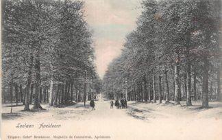 Ansichtkaart Apeldoorn Loolaan HC3301